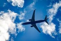 Маршруты самолётов по всему миру за один день (Видео)
