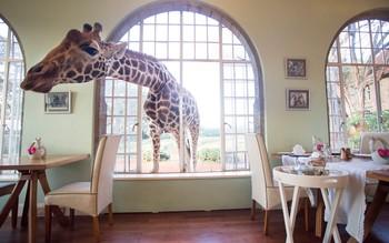 Топ 20 самых странных отелей в мире