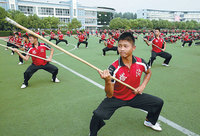 10 лучших школ боевых искусств Китая