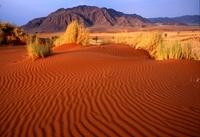 Африканская пустыня Намиб