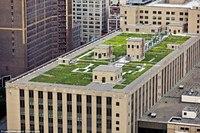 Зеленые крыши Нью-Йорка (15 ФОТО)