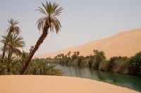 18 самых невероятных оазисов в пустыне