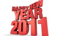 Готовимся к встрече нового 2011 года!