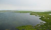Озеро Чаны — крупнейшее Западно-Сибирское озеро