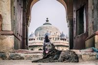 Город Дели фото (Delhi City Pictures)