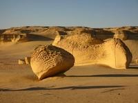 Долина Китов (Вади-аль-Хитан) — возможно путешествие в прошлое