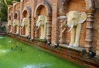 Мировой рейтинг зоопарков по версии Forbes Travel