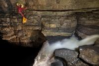 Пещера Эр Ван Дон: фантасмагория «затерянного мира»