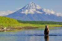 Камчатка: естественная красота природы (11 фотографий)