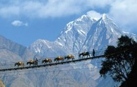 Непал отдых. Туристическая информация о Непале