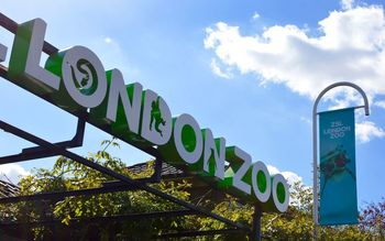 Лондонский зоопарк (London Zoo)
