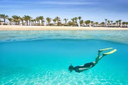 Марса-эль-Алам — достопримечательности, пляжи, фото и отдых в Египте