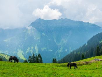 Лихтенштейн: одно из самых крохотных государств в мире