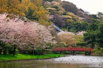 Санкэйэн: традиционный японский ландшафтный сад