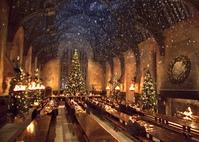 13 обеденных залов колледжей похожие на Хогвартс (13 college dining rooms similar to Hogwarts)